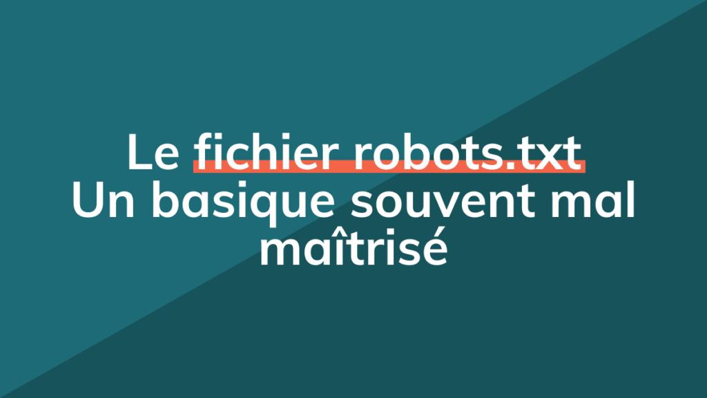 Guide Fichier Robots.txt pour le SEO