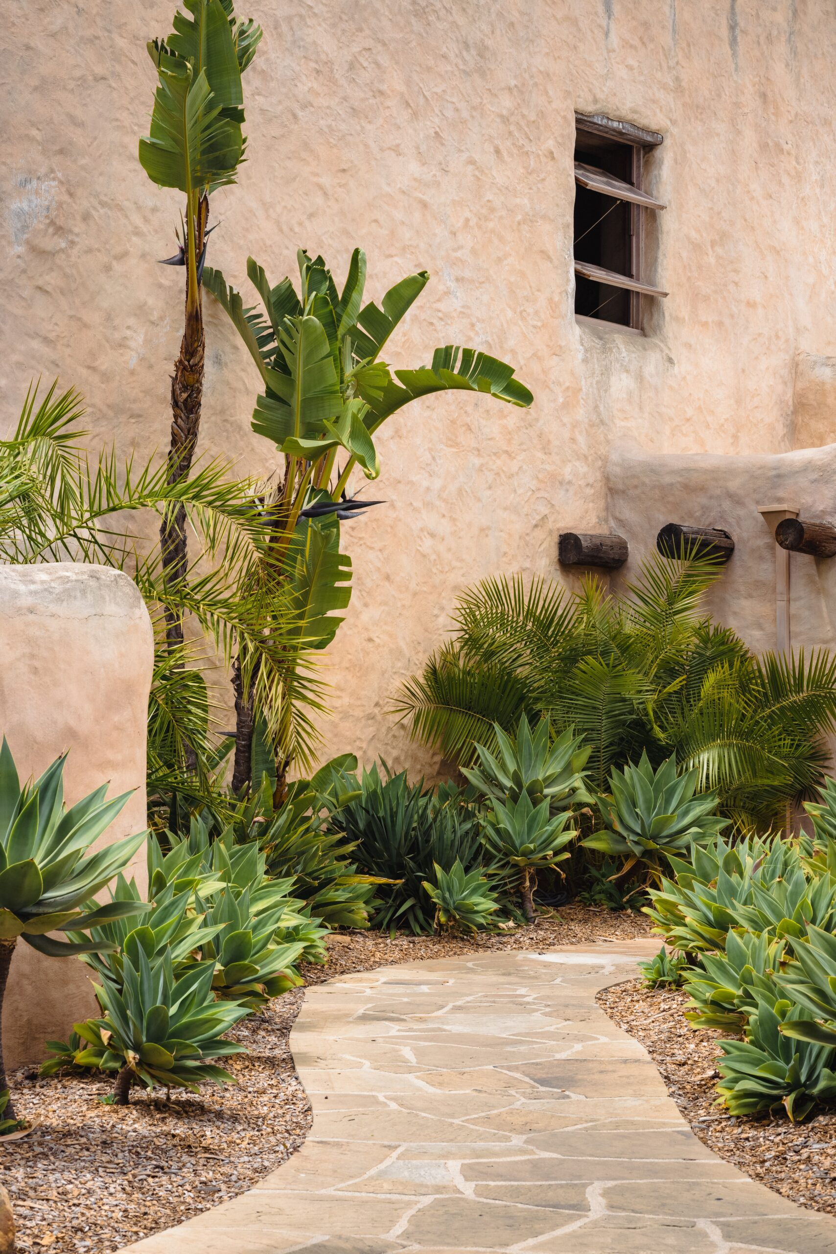 Mourtilup élégante Au Maroc - végétation et gastronomie